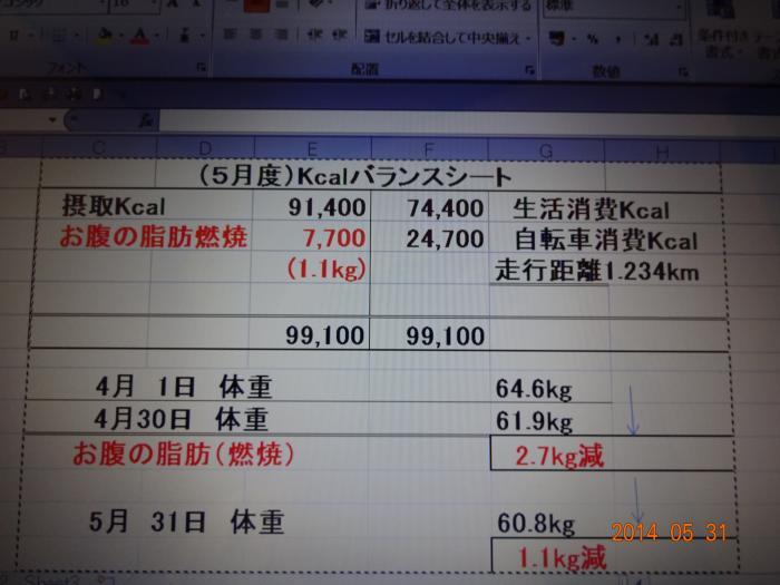 (5月度)Kcalバランスシート
