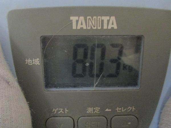 2014-3-3-ハチ-010