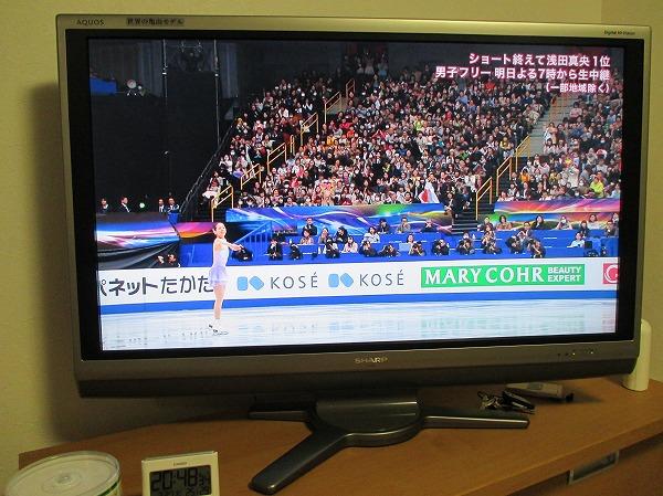 2014-3-27-ハチ-008