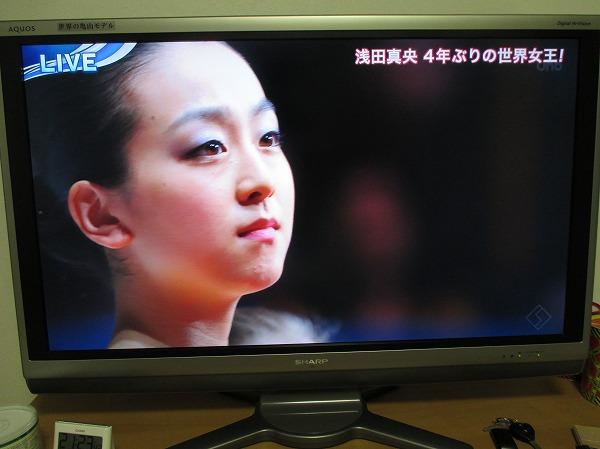 2014-3-29-ハチ-002