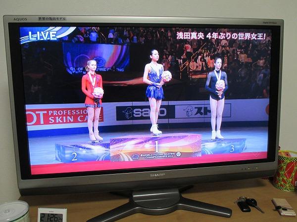 2014-3-29-ハチ-006