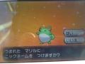 Bi_jpo4CMAEEVxC.jpg