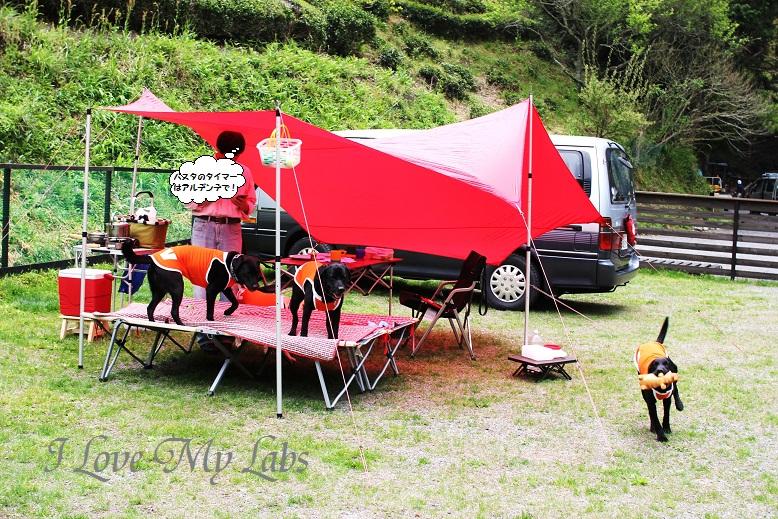 IMG_6771 (2)First Camp at Haruno