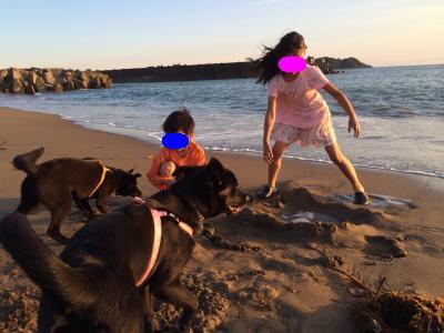 姉ちゃんとお友達で砂遊び
