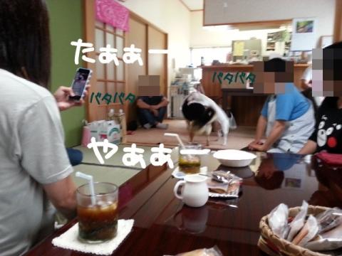 2014063005.jpg