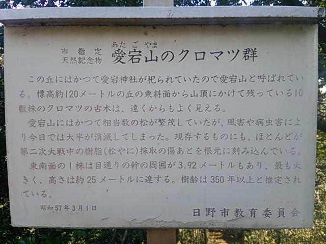 高幡不動017.JPG
