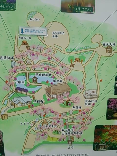 百草園00
