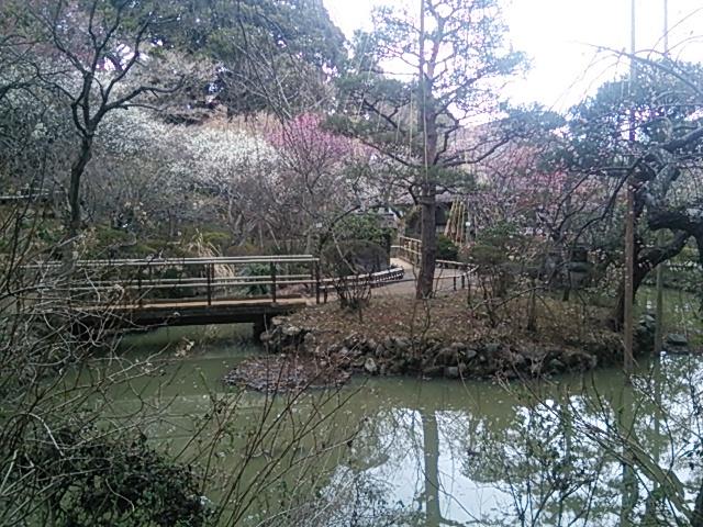 百草園05