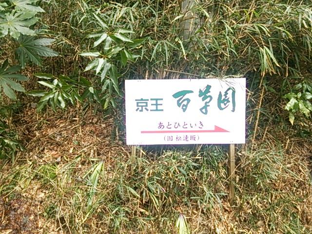 百草園14