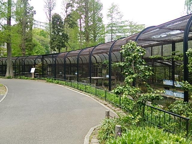 井の頭自然文化園25