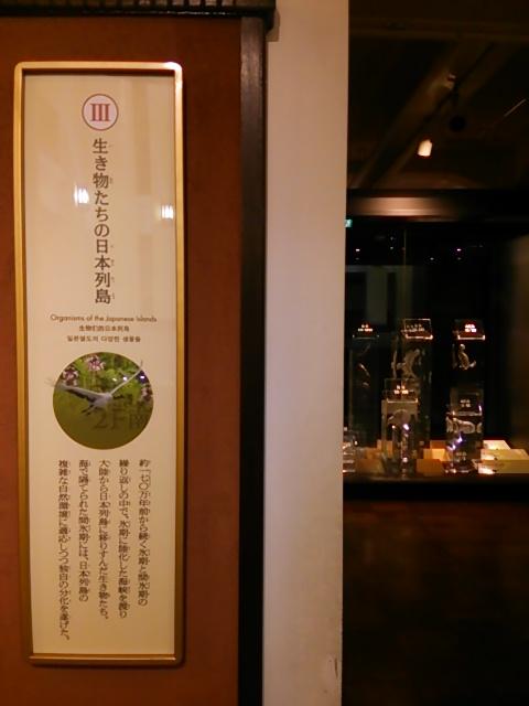 国立科学博物館日本館1