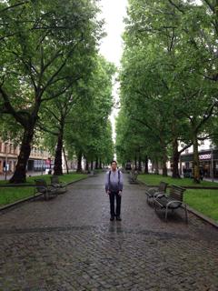 新市街の並木道