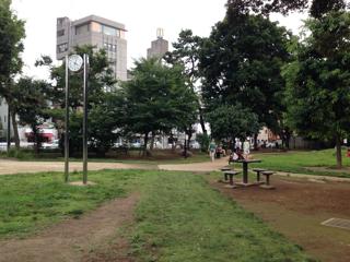 白金の公園