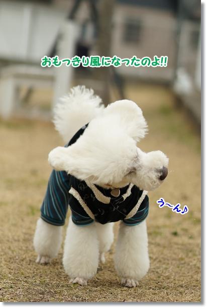 風になる5