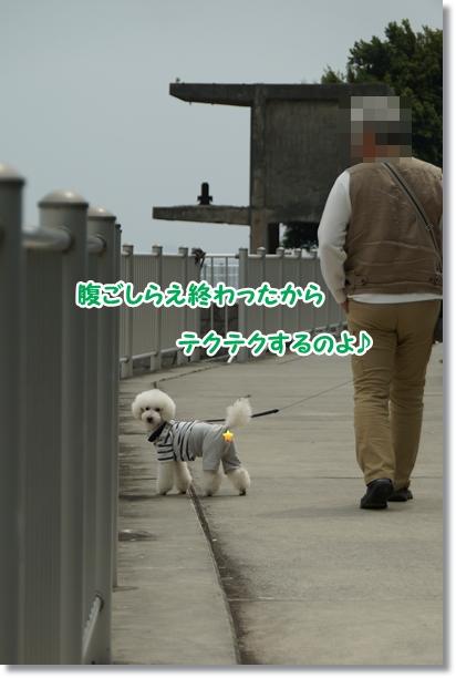 久々に海♪3