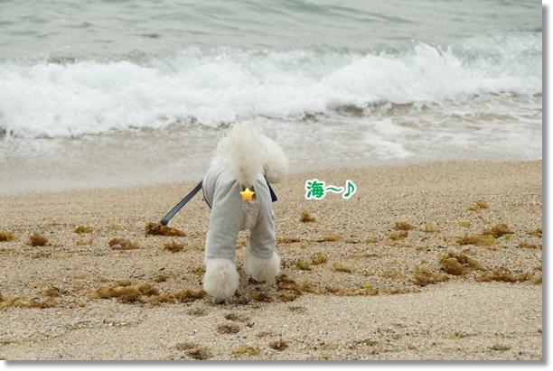 久々に海♪8