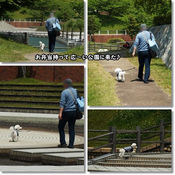 広い公園♪1
