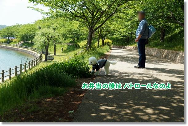 広い公園♪3