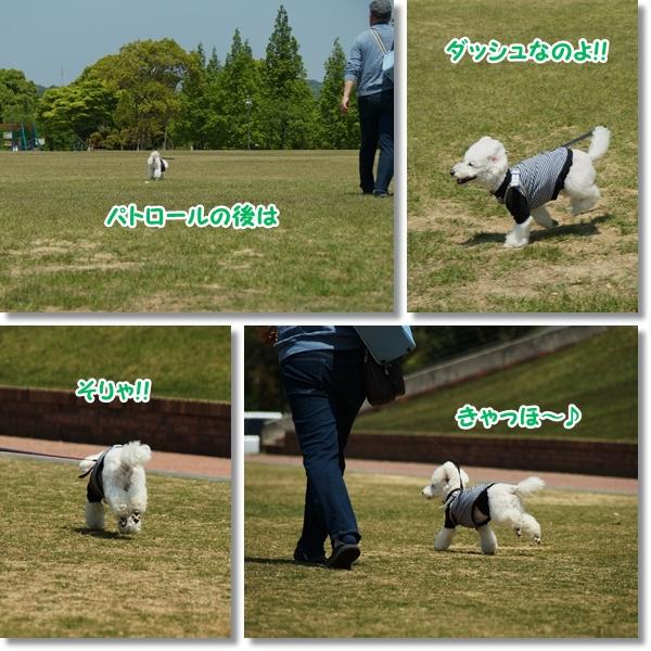 広い公園♪4