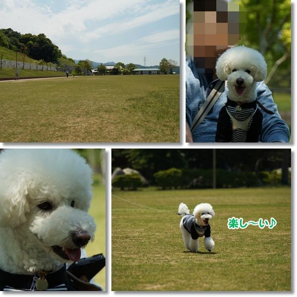 広い公園♪5