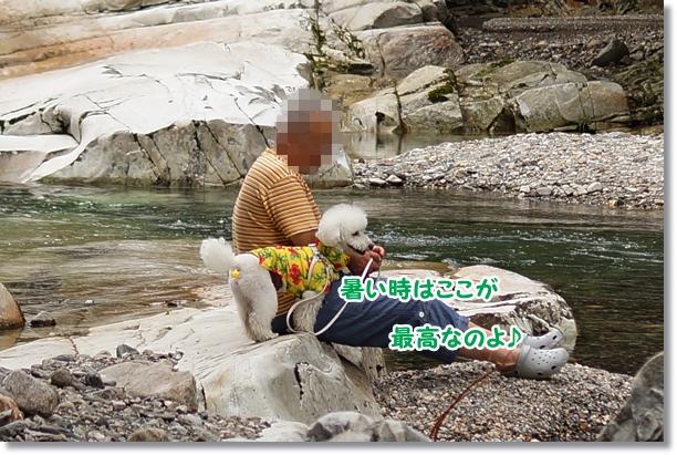 マイナスイオンたっぷり~!!7