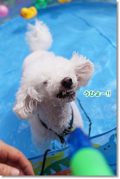 やっと プール開き(^_^;)3