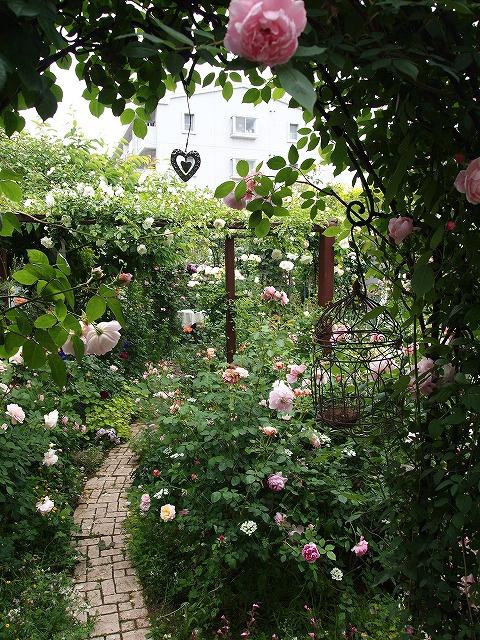 P5211865ゆうさんのお庭