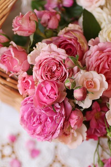 IMG_6958お庭のバラ