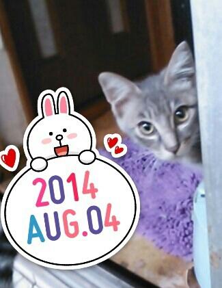 fc2_2014-08-07_13-59-59-575.jpg