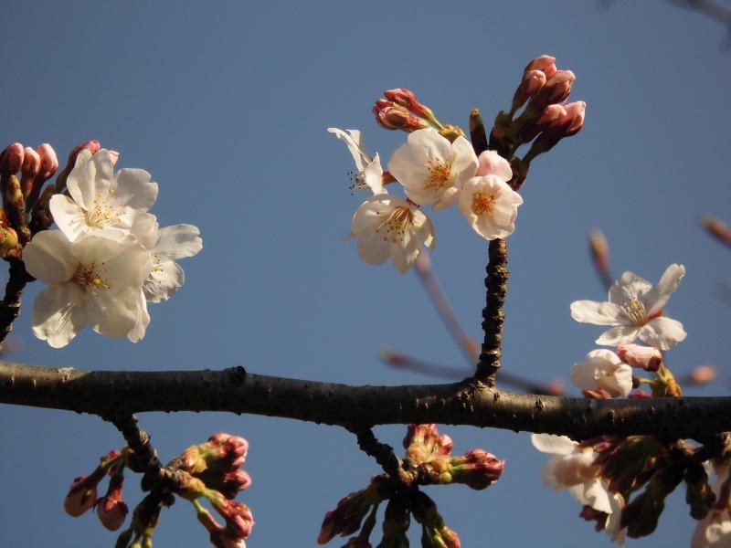 s-2014-03-28 010