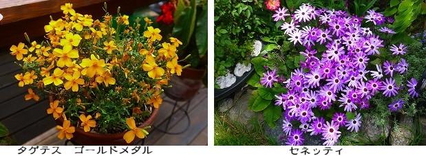 s-2014-05-12 01