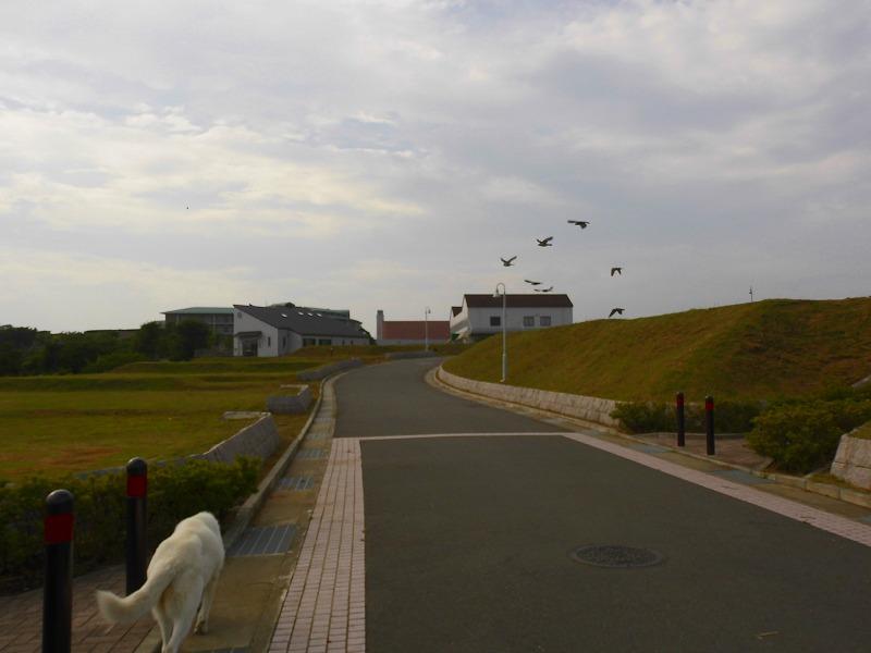 s-2014-07-20 007