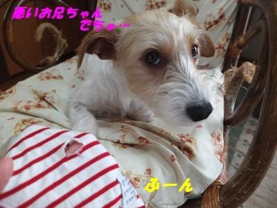 DSCF4624.jpg