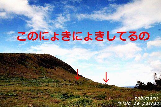 2014new39-201403182.jpg
