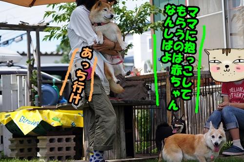 20140809-016.jpg