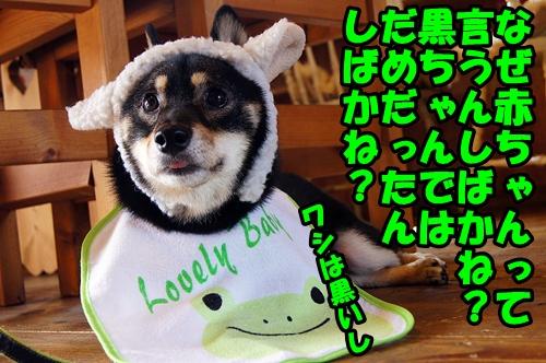 20140809-056-.jpg