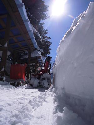 雪かき(2014年2月)
