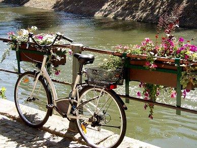 運河沿いの花と自転車REVdownsize