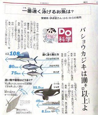 朝日新聞記事downsize