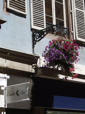 初夏のストラスブールは花の街ですdownsize