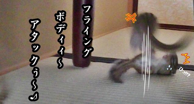 ookina5