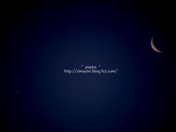 星 と 月