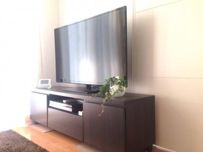 20140306_リビングテレビの横のパーセノシッサスシュガーバイン