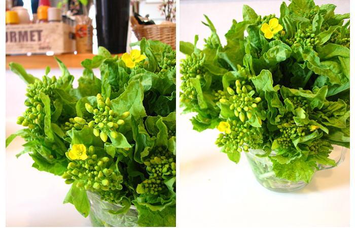 開きすぎた菜の花