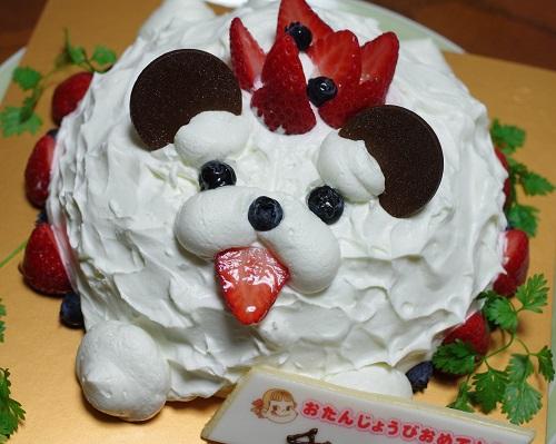 4648誕生日ケーキ