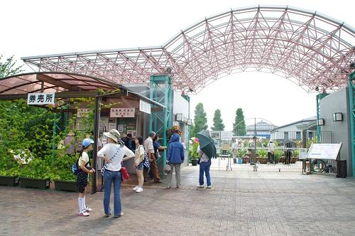 8075水生植物公園