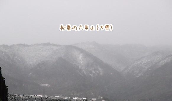 0215 寒い雪ゆきて 3
