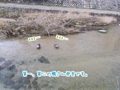 0215 寒い雪ゆきて 6