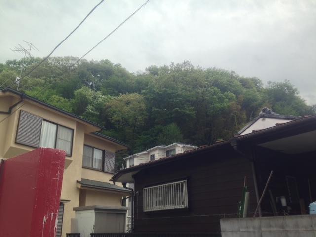 多摩寺尾城⑪