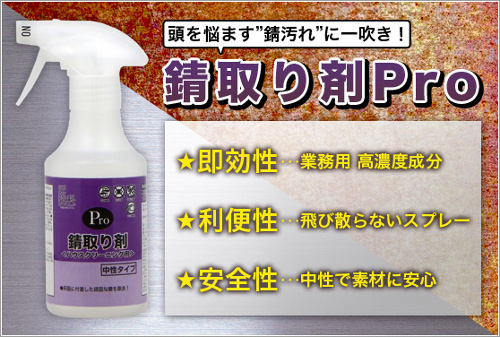錆取り剤Pro【業務用】